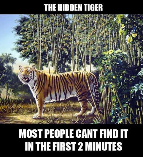 Most people can not find the hidden tiger in the first two minutes.
